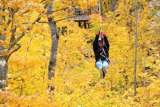 Fall colors surround a zipliner at Wildman Adventure Resort in Niagara.