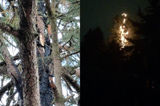 Lightning struck a tree in southeast Salem early Thursday morning.