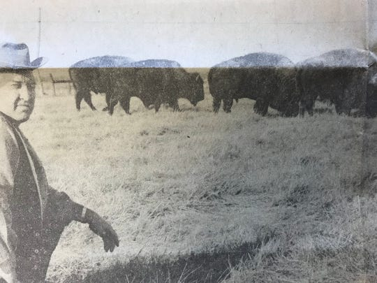 The Sunday News & Leader in 1975 ran a story about Audren Garrett's herd of buffalo west of Springfield.