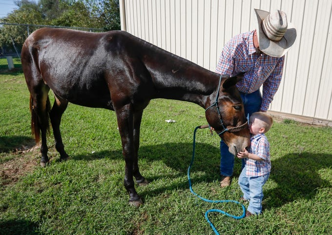 John Logsdon holds onto his mule Okie as his son Ian Logsdon, 2, gives him a kiss on the at the Ozark Empire Fairgrounds on Thursday, Aug. 29, 2019, in Springfield, Mo. Logsdon and Okie will be competing at the Ozark Mule Days event on Friday, Aug. 30 - Sunday, Sep. 1, at the fairgrounds.