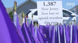 A sea of purple flags, each one representing a life lost to an opioid overdose in NJ, are on display outside Our Lady Star of the Sea Beach Chapel in Manasquan.