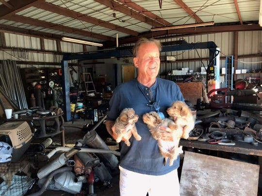 Tom Kepp, founder of SNIP Collier, an organization that facilitates spay and neuter services, takes three puppies from a home in Immokalee in February. Kepp asked the owner not to sell them. The puppies were put up for adoption, and their parents were spayed and neutered.