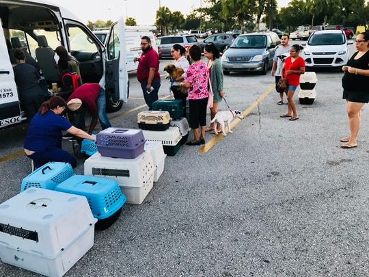 Immokalee residents line up in a shopping plaza parking lot for a SNIP Collier spay-and-neuter day. Gulf Coast Humane Society in Fort Myers transports dogs from Immokalee to its facility, spays or neuters them, and returns the pups to their owners at the end of the day.