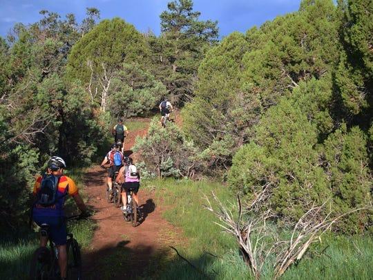 """Aprenda de los expertos locales en este paseo de 5.5 millas que está abierto a todos los niveles y edades. La política """"No Rider Left Behind"""" significa que viajarás como parte de un grupo."""