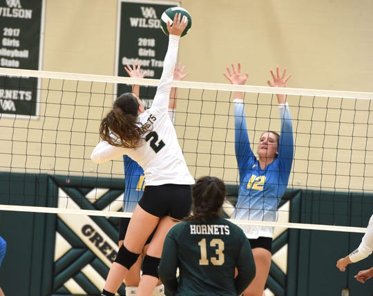 Cassidy Davis admits she still has some work to do to get her jumping back to 100 percent, but the Wilson Memorial senior is back playing volleyball after an ACL tear ended her season last October.