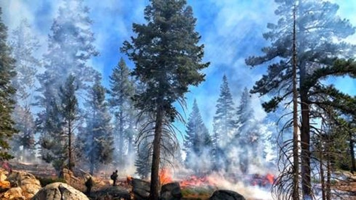 Portions of the Sequoia National Forest are burning, Broder Fire 10% contained