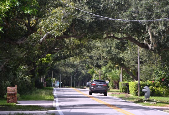 A car heads north Friday (Aug. 30, 2019) on Tropical Trail on Merritt Island under a canopy of oak trees lining the road. The ground is already heavy saturated in Brevard from recent heavy rains and there is a fear that heavy rains from Dorian could cause a loss of trees in Brevard,