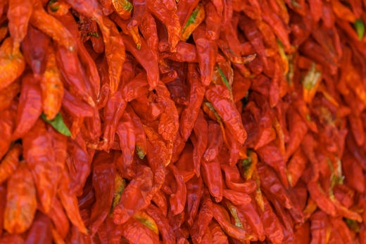 Hatch Chile Festival 2020.Hatch Chile Festival 2019 Chile Crop Was Late But Good