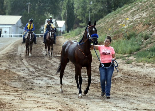 A horse is brought to the track for the first race on Aug. 31, 2019 at the Ruidoso Downs Racetrack.