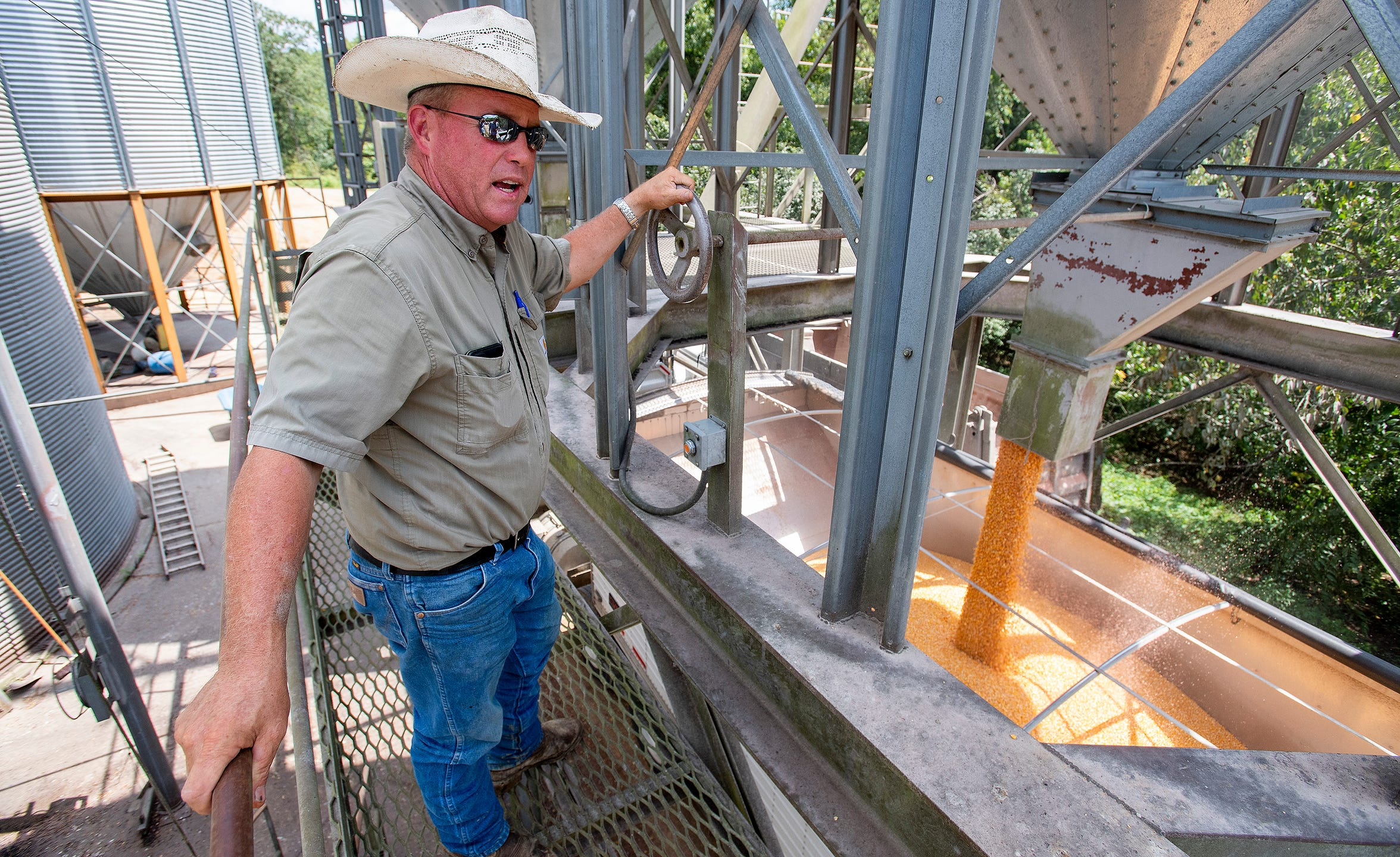 Mike Dee loads corn into a hopper bottom trailer as he works on his Dee River Ranch near Aliceville, Ala., on Wednesday August 28, 2019.