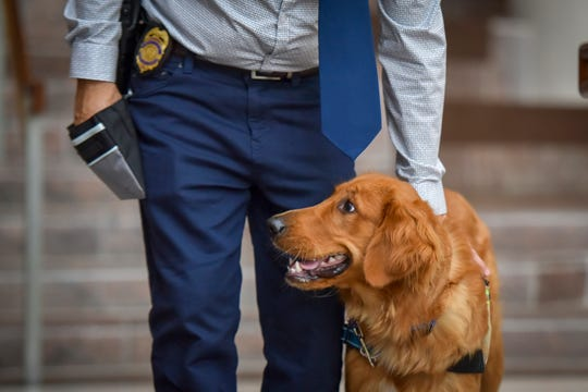 Chris Sharp, a 2nd lieutenant with the Fairfax County, Virginia, Police Department, trains service dog Jack at the Fairfax County, Virginia, government center on Monday, Aug. 26, 2019. The trainers and dogs are being trained by an organization called First Responder Canine, which provides assistant dogs to first responders who have had life changing trauma.
