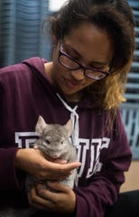 Mariana Saucedo, of Jensen Beach, lived in Sabal Chase only a week when her ground-floor apartment flooded in 2017's Hurricane Irma. In preparation for Hurricane Dorian, she brought her family and chinchilla, Wilson, to the pet-friendly shelter at the Willoughby Learning Center, seen Monday, Sept. 2, 2019, in Martin County.