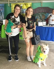 "Chelsea Miller and Otis, left, with Kaetlyn Mitchem and Drew at the 2019 ""Chewrassic Bark"" pup crawl in downtown Stuart."