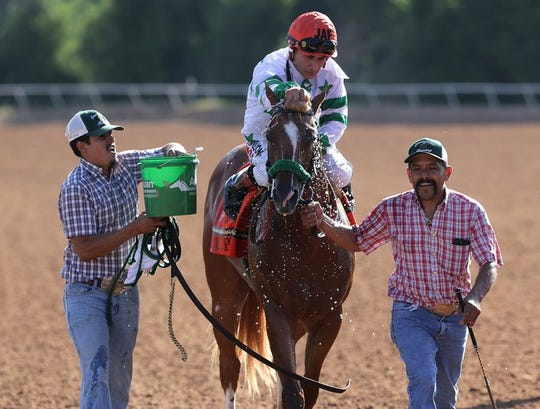 Jockey James A. Flores rides All American Futurity winner Mr Jess Jenkins after winning the races on Monday, Sept. 2 at Ruidoso Downs.