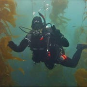 Jody Fritts is shown on one of hundreds of dives he's taken. Fritts has been on Conception at least a dozen times, diving off the coast near his Oxnard home.