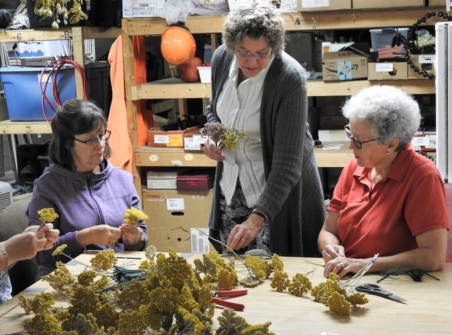 Diana Swigert, center, helps guide Kathy Gwinn and Debby Corder who will be using yarrow and other plants for Chrstimas decoration at Roscoe Village.
