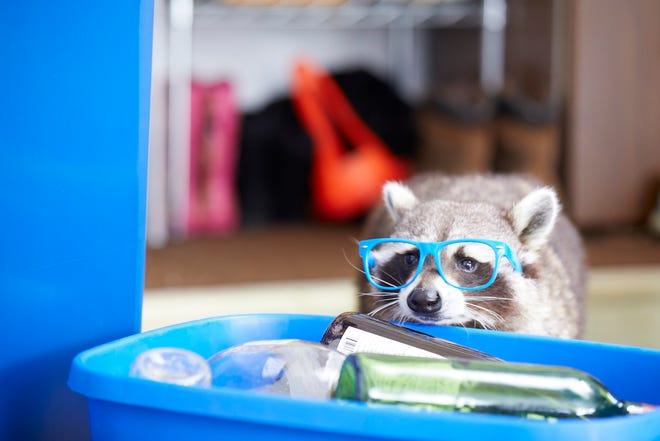 The Recycling Raccoon Squad's Gladys Glass offers simple suggestions — like rinse and empty all glass containers — for Michigan residents.