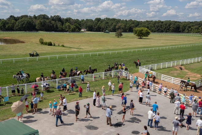 Horses come out on the track for a race at Kentucky Downs. Aug. 31, 2019.