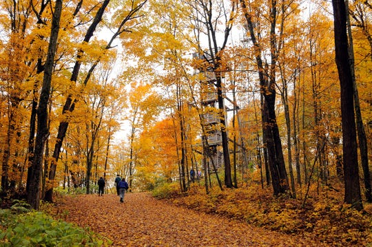 Fall colors surround the observation tower on top of Timm's Hill, Wisconsin's highest point.