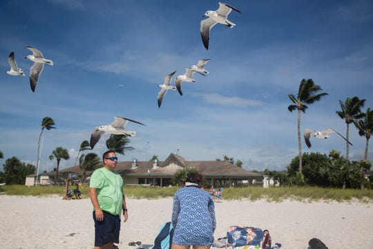 Gulls slides in the wind at the Naples Beach on Tuesday, September 3, 2019. Locals and tourists continue visiting scenic spots in Naples, taking advantage of heavy winds and waves bought on by Hurricane Dorian.
