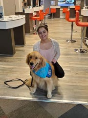 Elijah, a comfort dog with Our Redeemer Lutheran Church in Wichita Falls and Lutheran Church Charities, traveled to Odessa to give solace and warmth in the wake of Saturday's mass shooting.