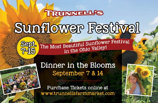 Trunnell's Sunflower festival runs through Sept. 14.