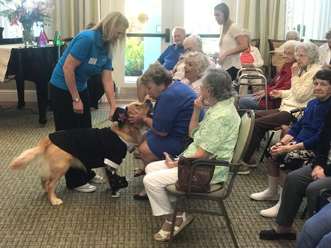 Residents of Grand Oaks of Jensen Beach share slobbery kisses with dogs from the Humane Society of the Treasure Coast at the Visiting Nurse Association of Florida's Memory Café program in August..