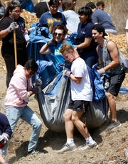 """Carrying a tarp full of mulch are California Lutheran students Andy Garcia, front left; Trevor Harvey, front right; Izzy Bordagaray, back left; and Lukas Prelooker. The students were participating in the community service project """"You Got Served"""" on Tuesday at the Ventura Botanical Gardens."""