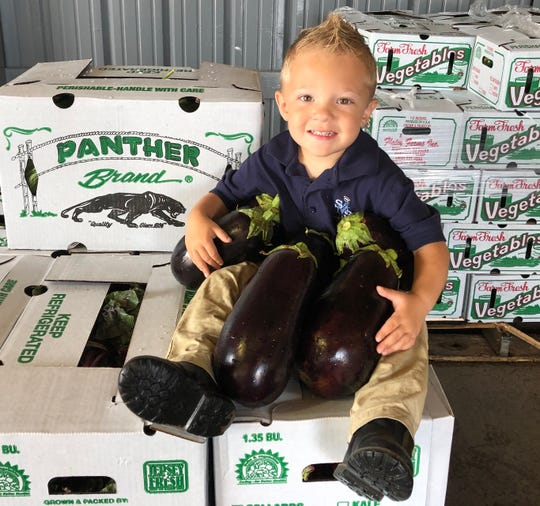 Robert Flaim III, 3,  is the fifth-generation of Flaim farmers and a natural when it comes to marketing his family's crops, including eggplant distributed under the Panther Brand.