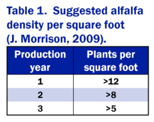 Table 1 shows the suggested alfalfa plant density per square foot based on the production year.