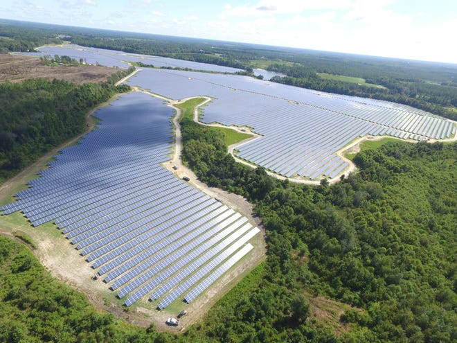 Live Oak Solar Energy Center in Metter, Georgia. The center produces 51 megawatts of electricity and is owned by NextEra Energy.