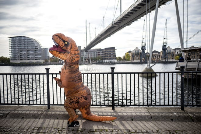 A maid of honor showed up to her sister's wedding in a dinosaur costume because she wanted something she could wear more than once.