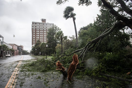 Downed tree limbs on Calhoun Street at Marion Square in Charleston, SC, during Hurricane Dorian Thursday, September 5, 2019. The storm center was 80 miles south-southeast of Charleston at 7 a.m. packing sustained winds of 115 mph, according to the National Hurricane Center.