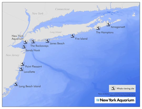 A list of 10 suggested sites where whales can possibly be seen from shore. Please note that this is not a comprehensive list of viewing locations.