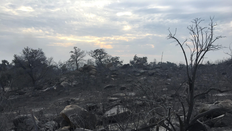 Tenaja Fire near Murrieta burns 2,000 acres, 20% contained