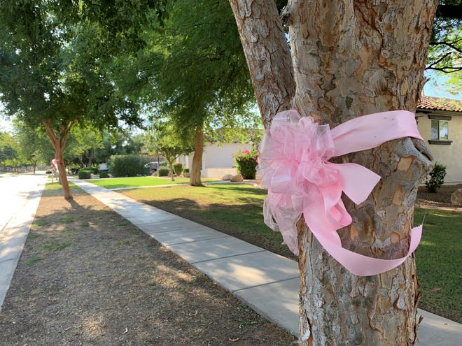 The community hangs pink ribbons throughout a Gilbert neighborhood to show support for the family of a 3-year-old girl who died Sept. 3, 2019, after being left in a hot car.
