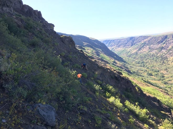 Harney County Search and Rescue works to recover the body of a fallen hunter on Steens Mountain last weekend.