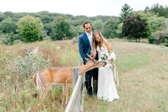 Morgan and Luke Mackley being photographed on their wedding day and visited by a deer who decided the bouquet looked like a snack.