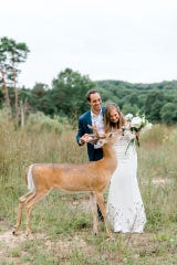 The deer enjoyed snacking on the white and pink roses in the bride's bouquet.