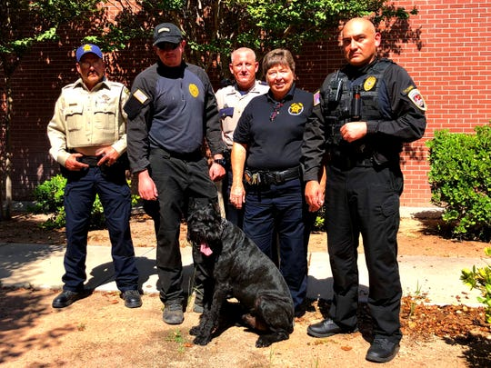 Doña Ana County Sheriff's Sgt. Scott Bayles, from left, Officer Curtis Smith, Capt. Manion Long, Sheriff Kim Stewart and Capt. Josh Fleming pose with Dallas, a 6-year-old giant schnauzer who joined the department this week.