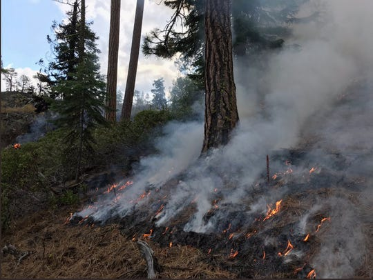 Incident 876 is currently a half acre in size and burning in a 33-acre kipuka (a forested area completely surrounded by lava flows) in Deschutes National Forest