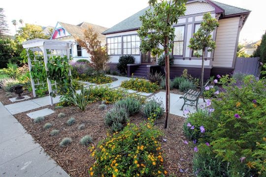 Here's an example of water-saving landscaping that class participants will learn about.