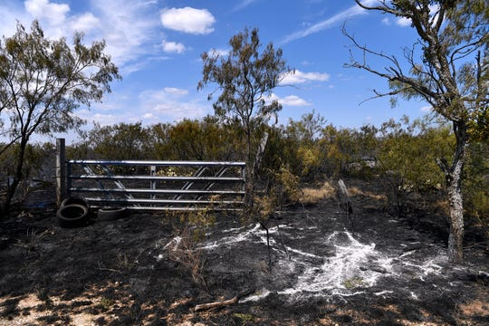 The burned area around a gate along Autumn Sage Road after a grass fire Sunday.