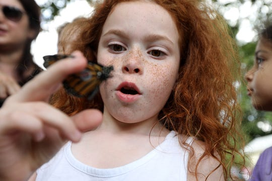 Elizabeth Bocheko reacts as she watches the monarch butterfly she holds in her right hand, at the annual Butterfly Festival.  Sunday, September 8, 2019