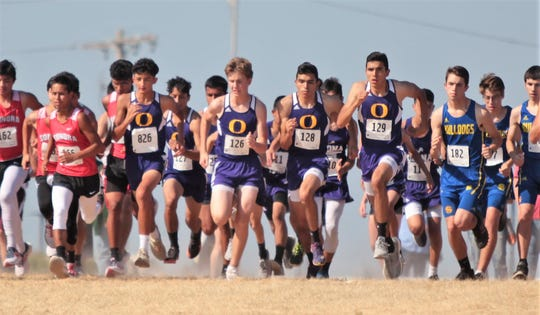 Ozona High School tries to get a good start at the ASU Stampede Cross Country meet in the boys division race Saturday, Sept. 7, 2019, at Angelo State University.
