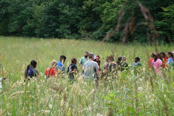Dr. Dwayne Estes, with the Southeastern Grasslands Initiative, works with freshmen volunteers.