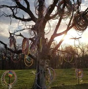 "A dead oak tree near Amber, Iowa, became popularized as the ""Hula Hoop Tree"" after accumulating various hula hoops on its branches."