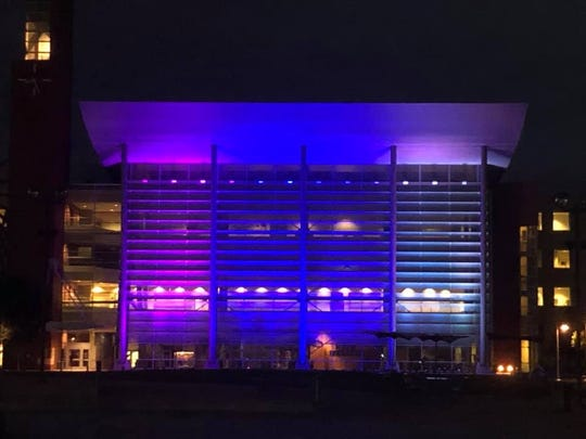 The Warren City Hall was lit up with blue, gray and lavender on Aug. 8 to raise awareness about lissencephaly after the granddaughter of Warren resident Janis Kinkela was diagnosed with the rare disease