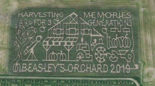 The corn maze theme in 2019 at Beasley's Orchard in Danville is Harvesting Memories for Three Generations.