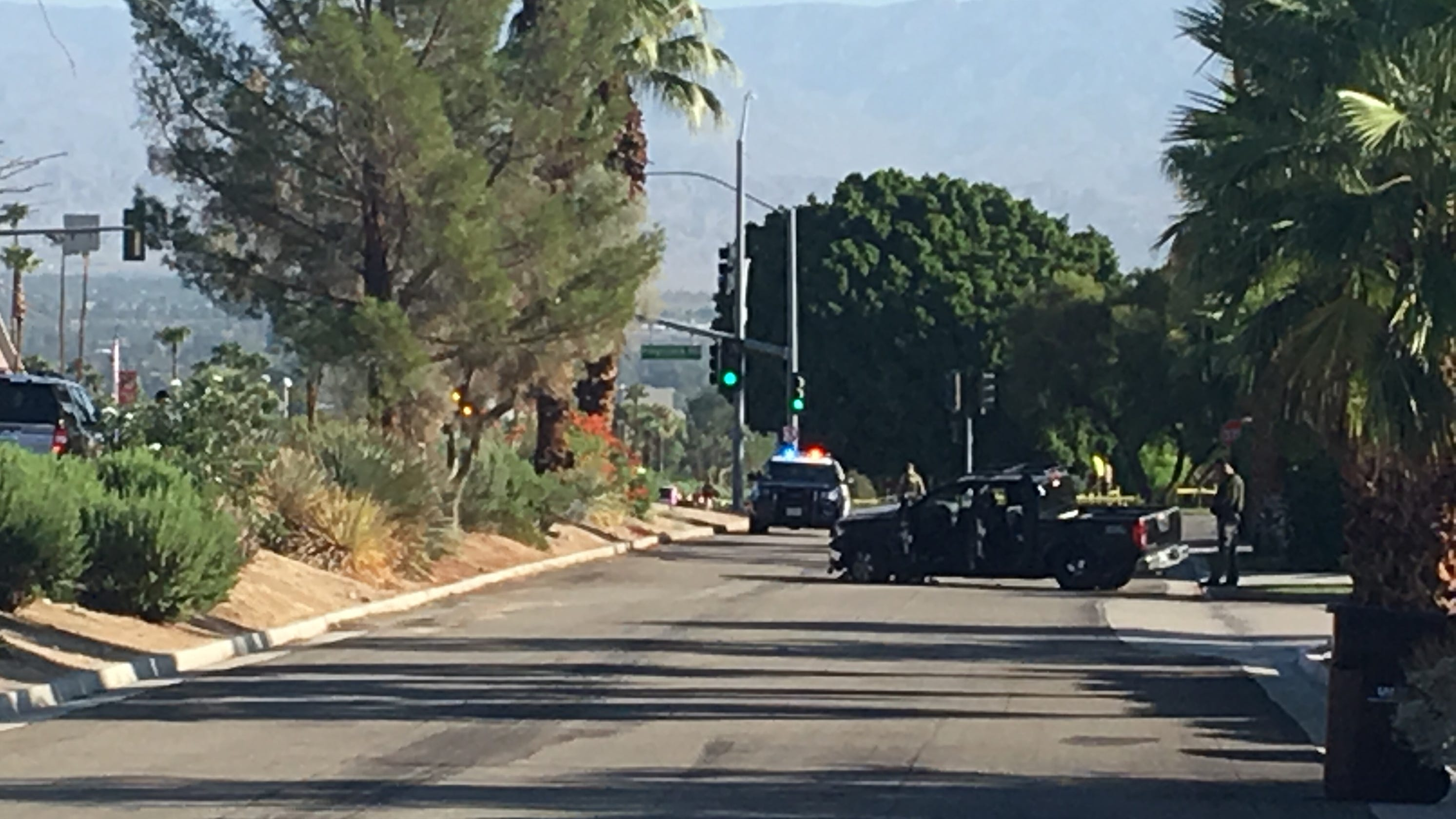 65-year-old Palm Desert woman who died after she was struck